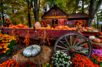 Strawberry Hollow Farm, Guilford USA